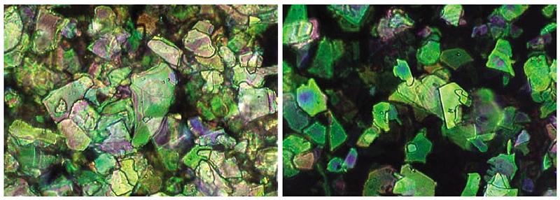 Перламутр и ксералик под микроскопом